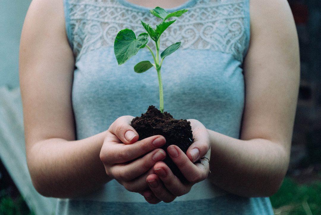 Sustainability Photo
