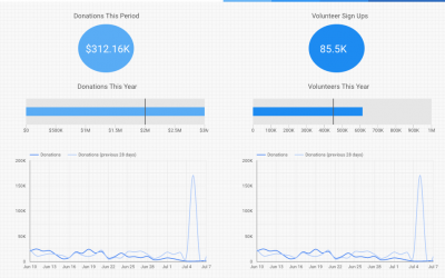 The Ultimate Guide To Our Nonprofit Custom Dashboards