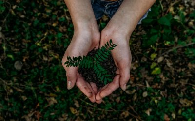 8 Ways To Make Your Marketing Campaign Eco-Friendly